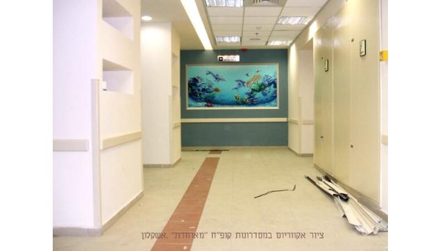 ציור קיר אקווריום קופת חולים מאוחדת